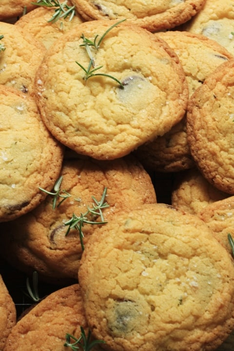Dark Chocolate Chip Rosemary and Fleur de Sel Biscuits  |  Stroud Green Larder