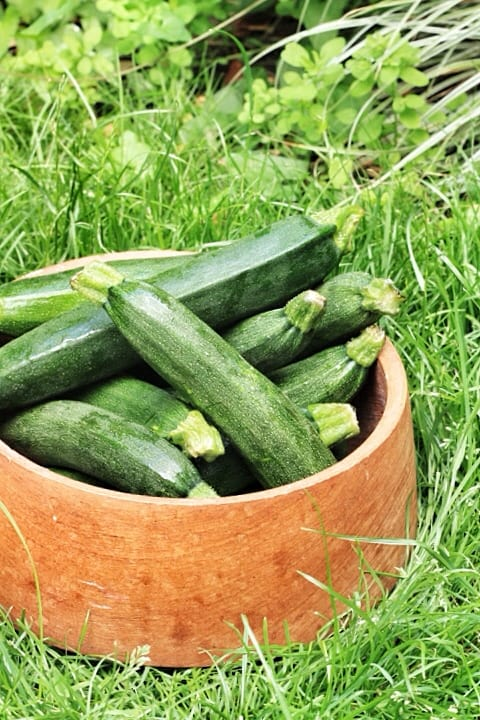 courgettes in a wooden bowl on the grass