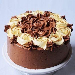 Vanilla Malt Cake with Mocha Buttercream