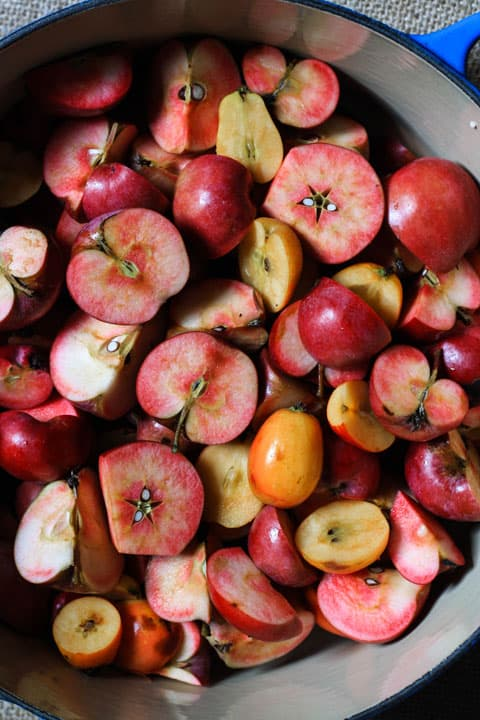 Baked Apple Butter is the perfect hybrid between a jam and a chutney. The apples are stewed in cider, brandy, honey and spices then smoothed and baked slowly in a low oven for the most intensely thick and rich apple sauce that is the ultimate Autumn preserve.