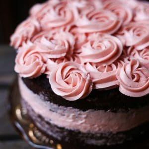 Chocolate Raspberry Cake {gluten-free}