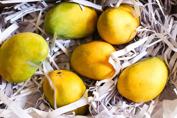 Vegan Mango Lime Fro-Yo