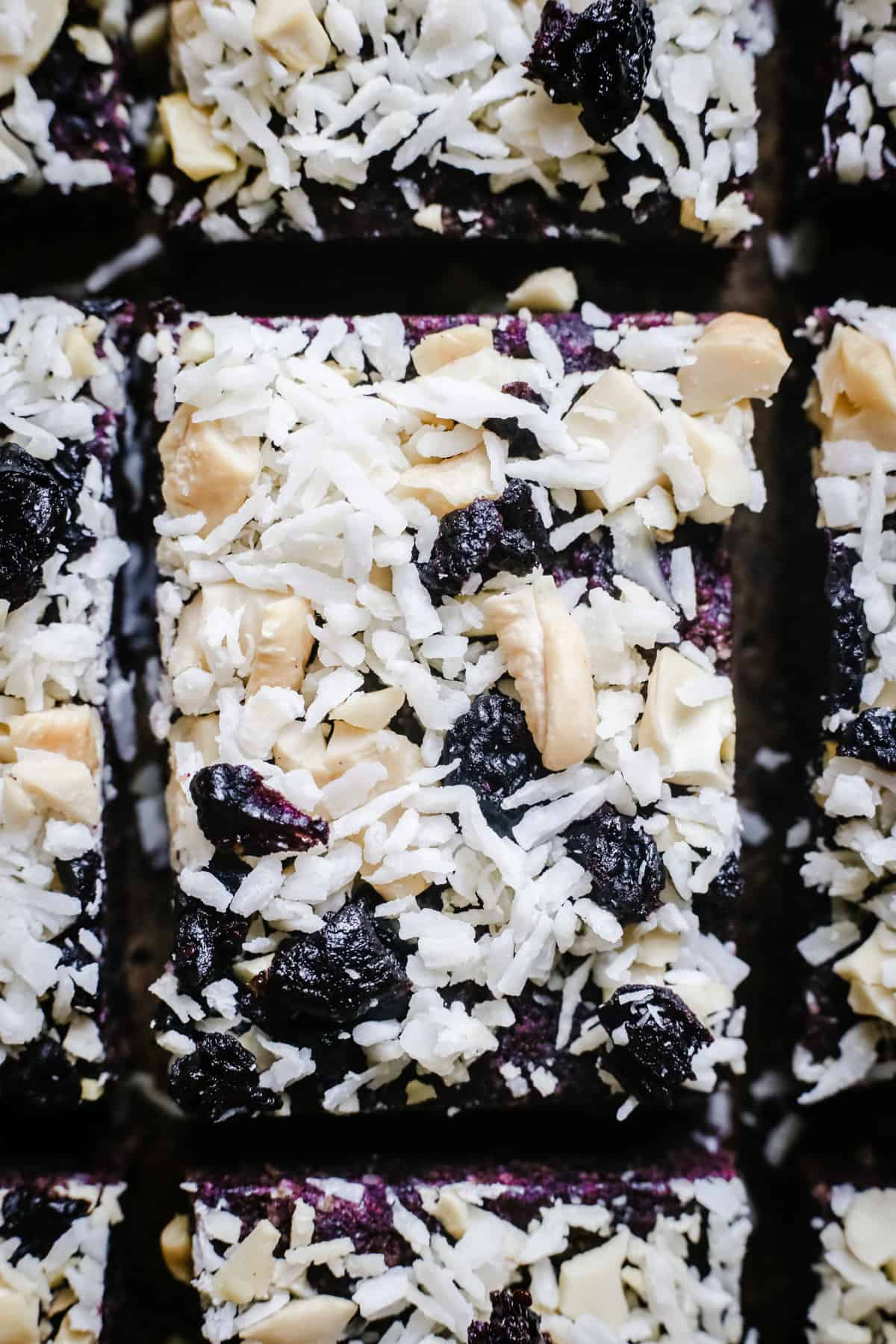 close up of Raw Blueberry Coconut Energy Bars