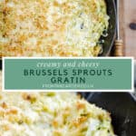 Pinnable image of Cheesy & Creamy Brussels Sprouts Gratin with close up image and overhead image and title in between images