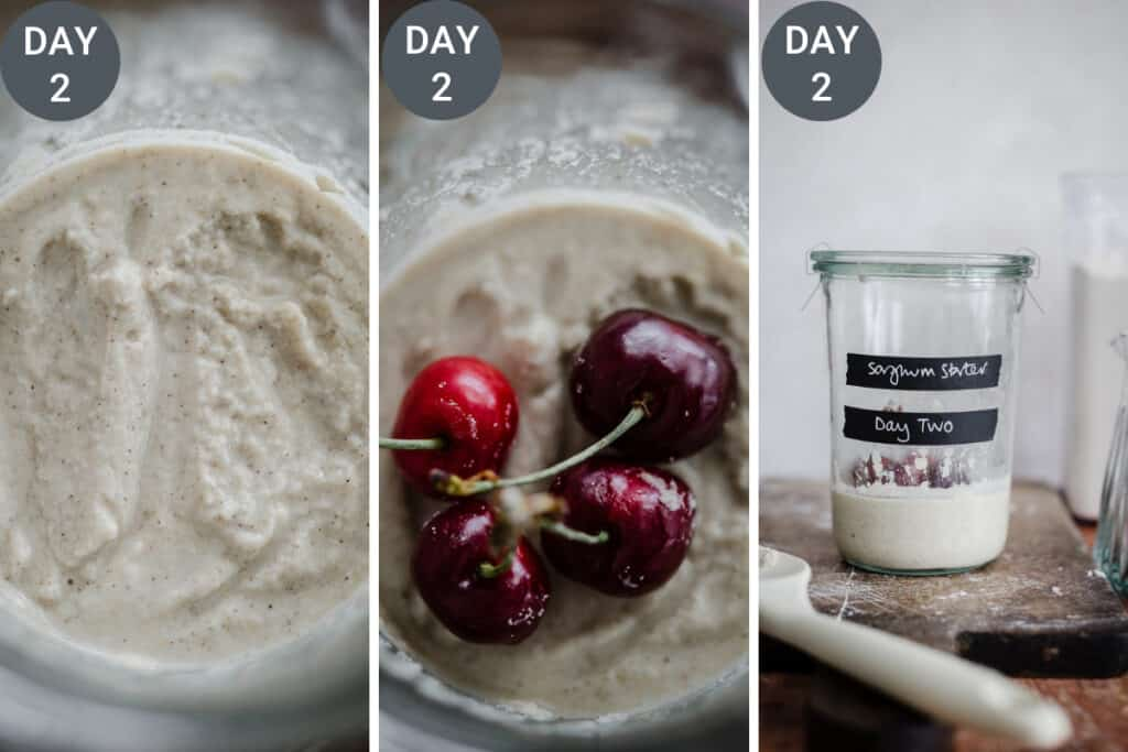 images showing the feeding of a sourdough starter. The starter being mixed.