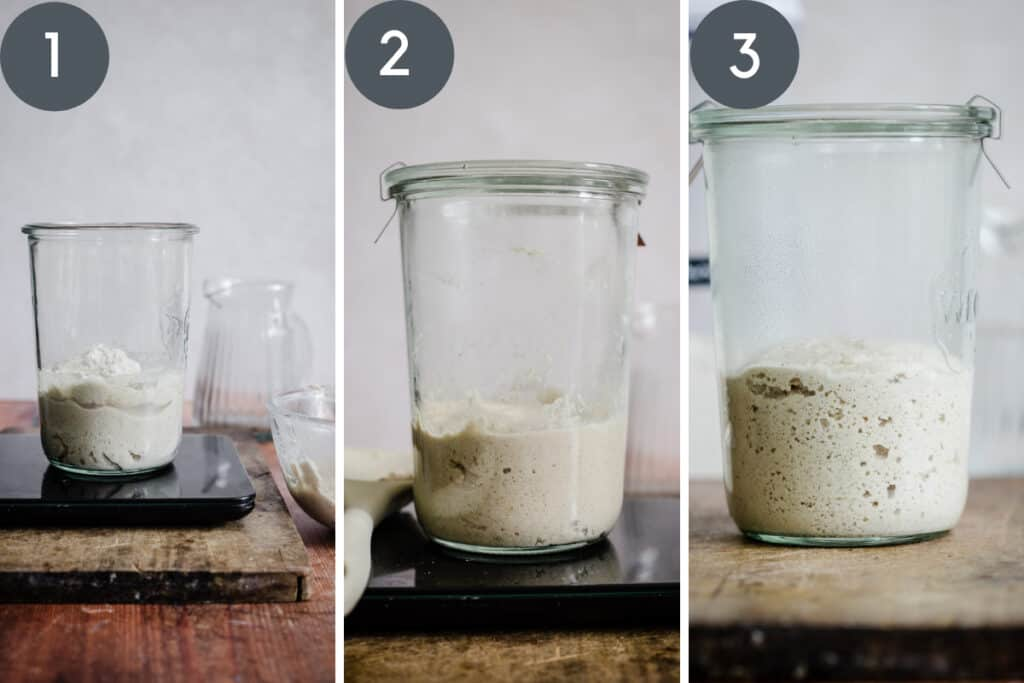 images showing starter being fed for making levain